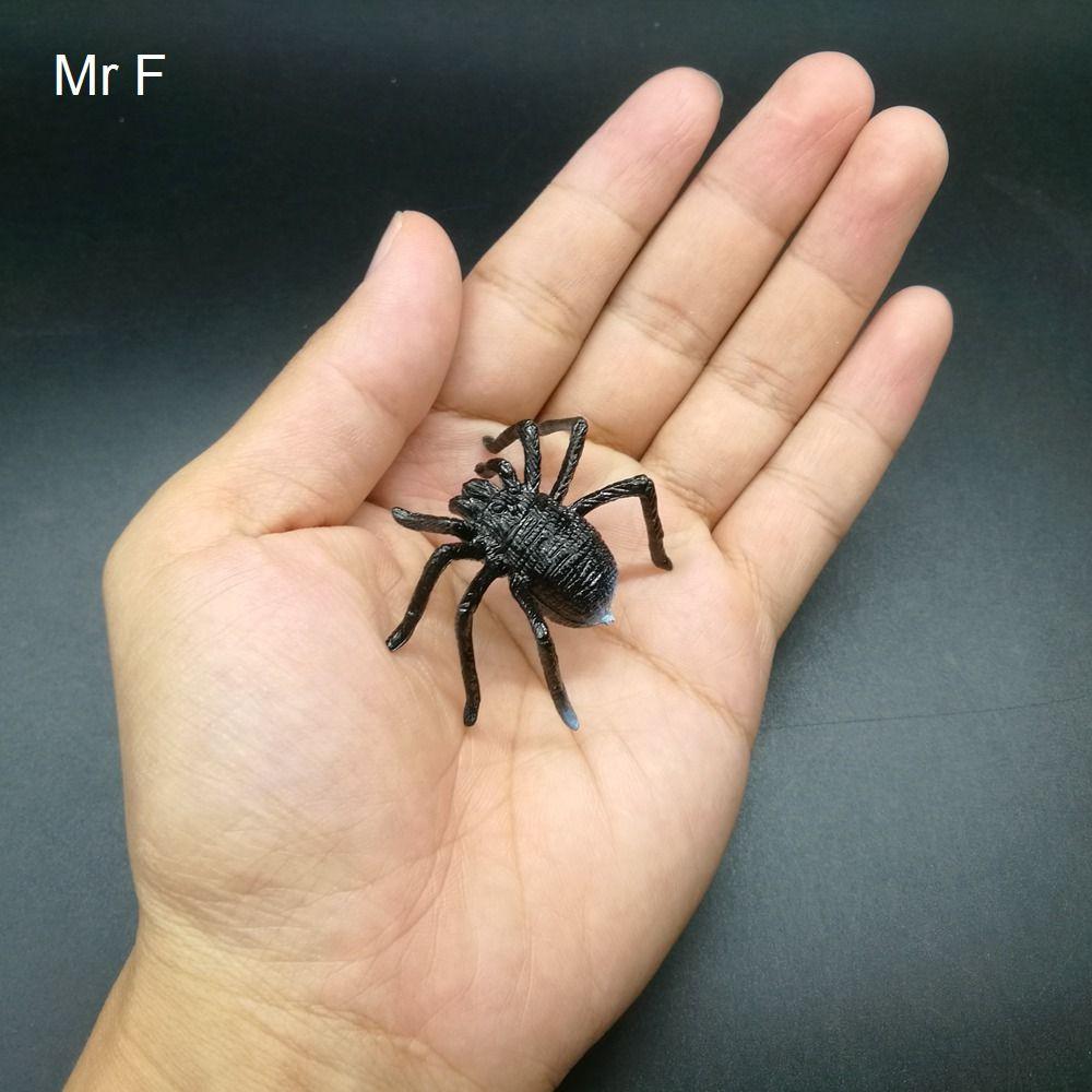 Cadeau pour enfant Black Spider Insert Blagues pratiques Gags Jouets Science Animaux Nature Modèle Jeu