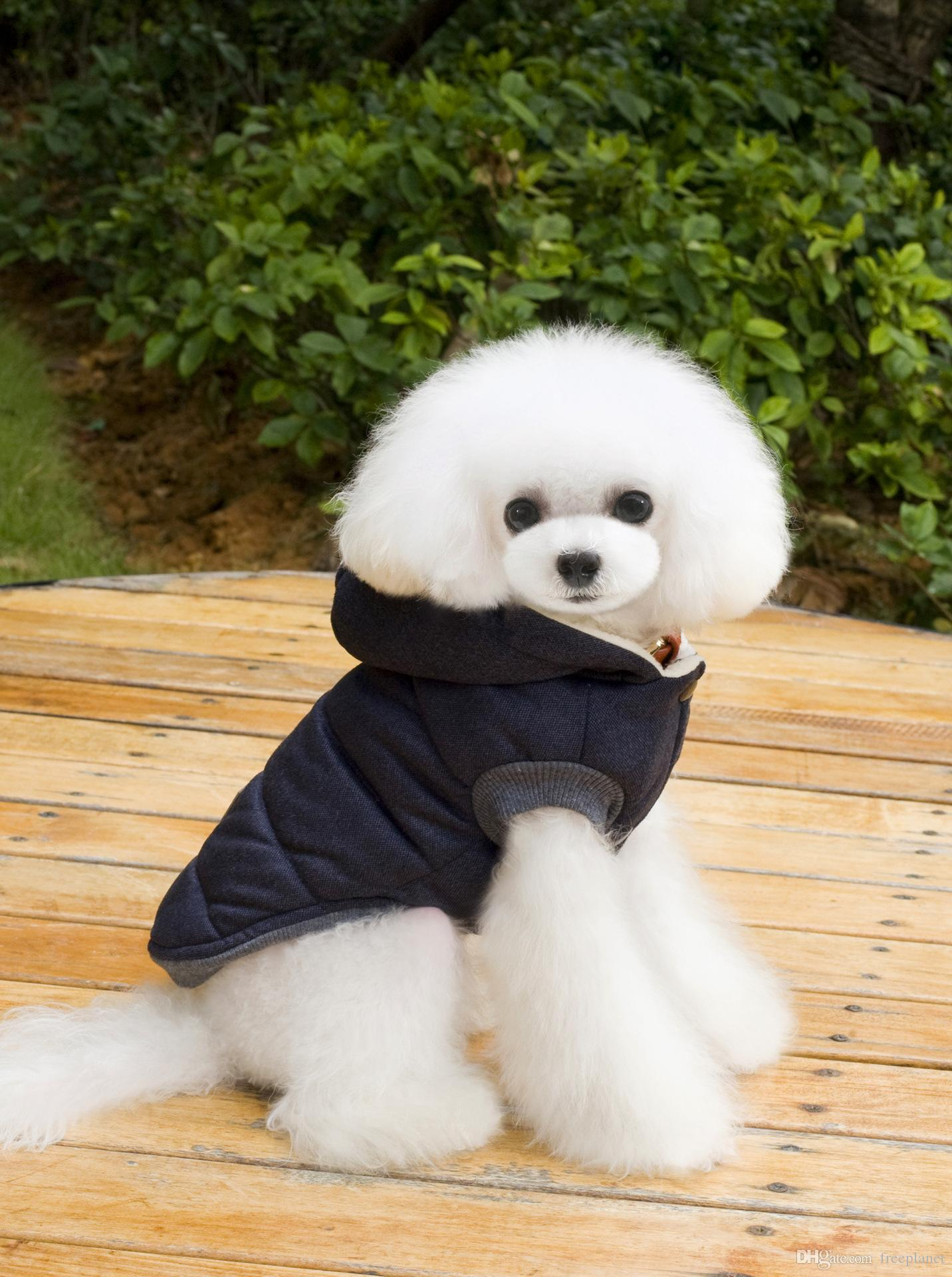 pretty cheap cheap prices great fit 2019 Winter Pet Coat Clothes For Dogs Winter Clothing Warm Dog Clothes For  Small Dogs Christmas Big Dog Coat Winter Clothes Chihuahua From Freeplanet,  ...