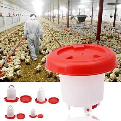 Robusta gallina de plástico pollo codorniz Aves Bebedor alimentador del alimento de pollo Bebedor