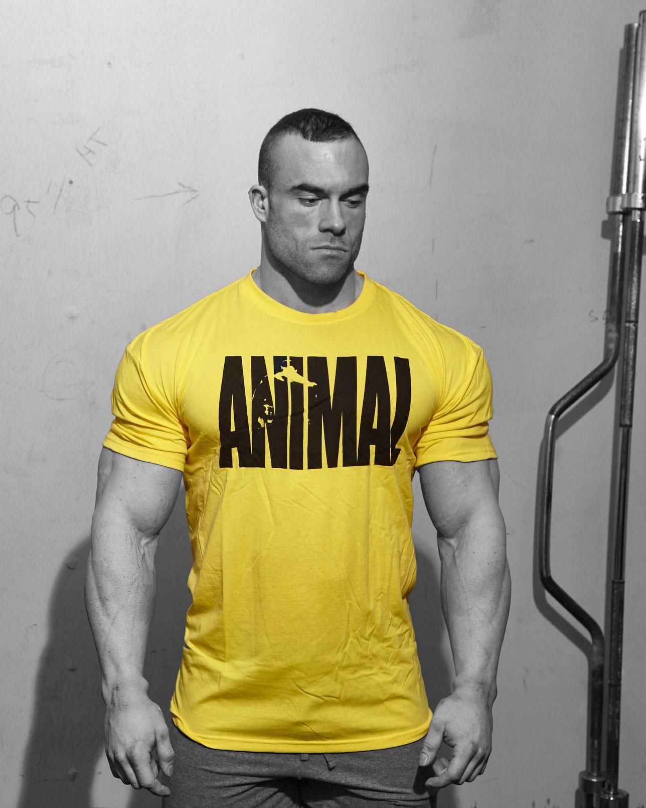 Животные буквы печати трексуита футболка мышечная рубашка тренды в фитнес хлопчатобумажная одежда для мужчин бодибилдинг тройник большой XXL