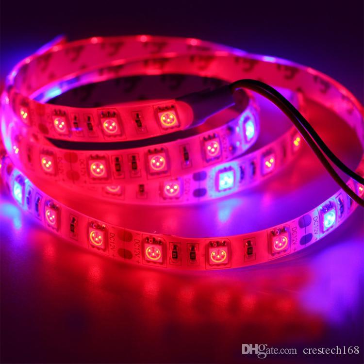 CRESTECH 전체 스펙트럼 식물은 꽃 온실 수경 식물 야채 LED 스트립에게 빛 5050 12V 실내 식물 성장 램프를 성장