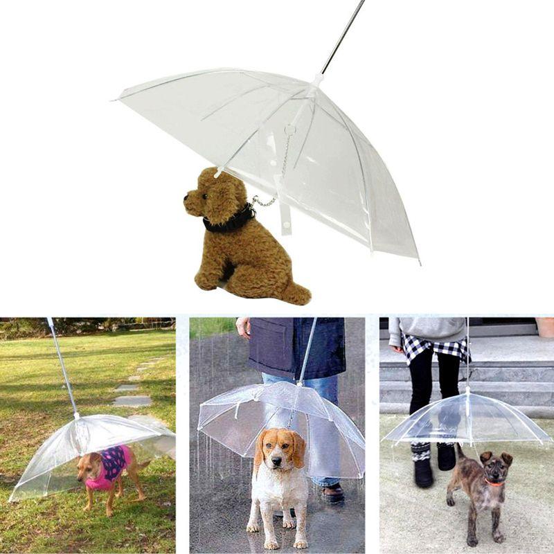 Transparente PE Pet Guarda-chuva Pequeno Cão Filhote de Cachorro Umbrella Chuva Engrenagem com o Cão Leva Mantém Pet Seco Confortável na Chuva Nevando