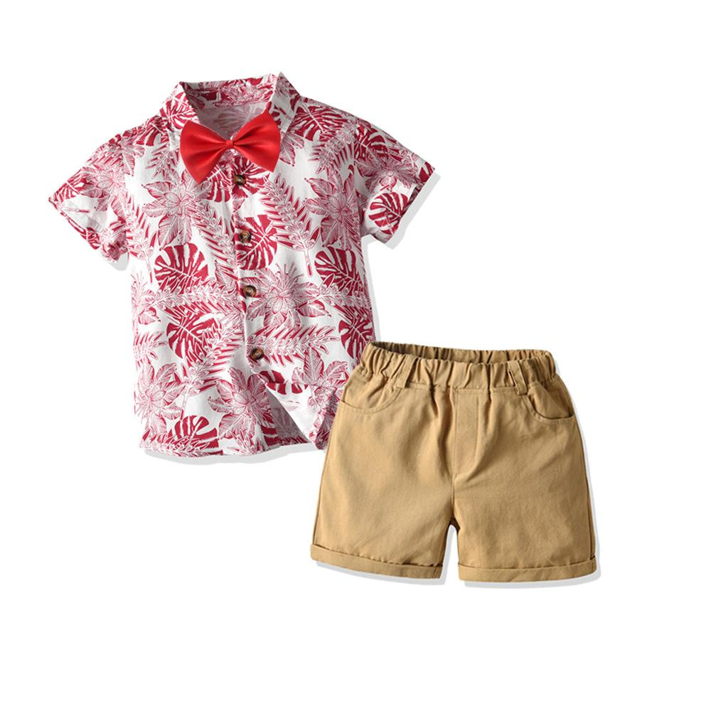 Toddler Kids Baby Boy Hawaii 2PCS Summer Clothes T-shirt Tops Shorts Outfits Set