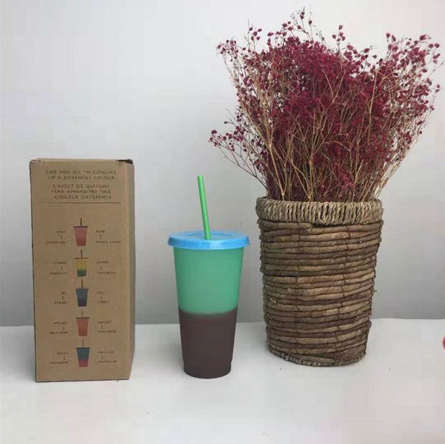 Кружка изменение температуры LJJO7994 чашка с соломинкой воды изменение цвета кофе цвета пластиковые бутылки воды чашки красочные 5 шт. / Установите холодный WGIWT