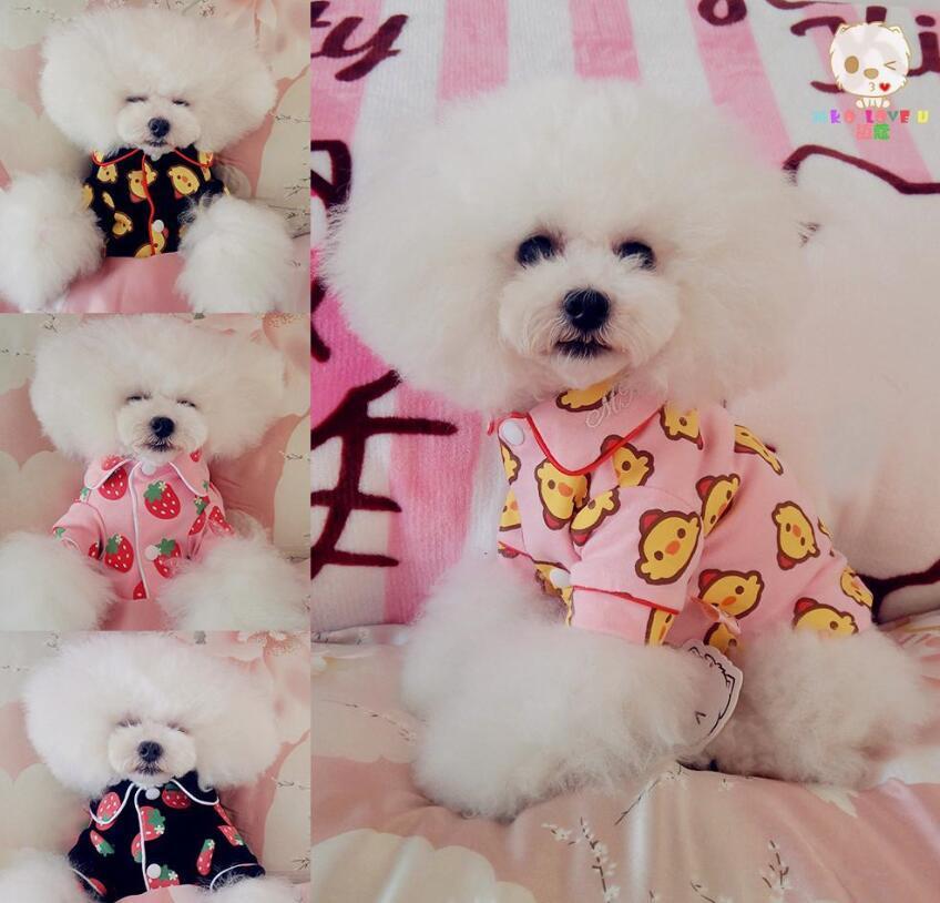 Vestiti del cane del gatto della maglia della camicia Pure camice di colore del gatto Abbigliamento per gli animali a strisce Dog T Piccole Medie Pet bambino Abbigliamento Abbigliamento