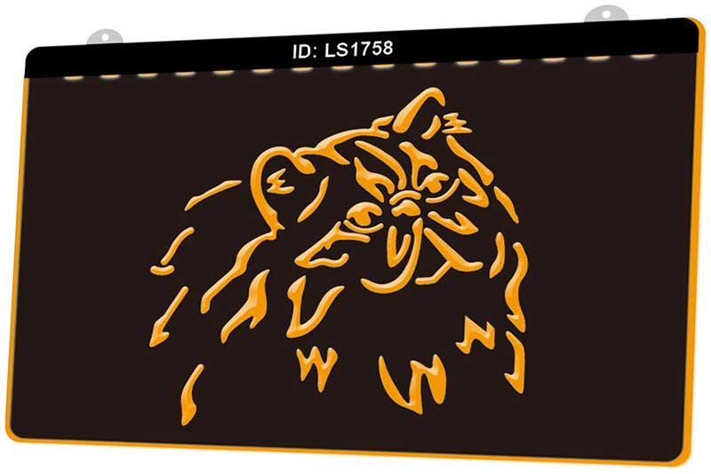LS1758 gato persa del gatito de la tienda de animales de la raza Nueva sesión en 3D de luz LED de grabado Personalizar bajo demanda en color múltiple