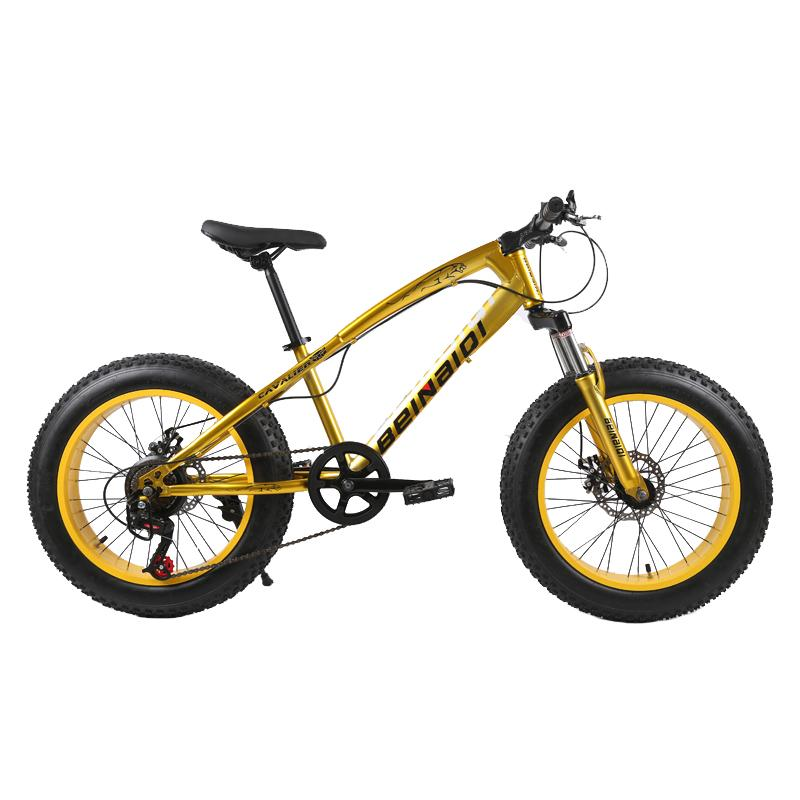 20 inch fat bike children kid fat tire mountain bike Beach cruiser bicycle high quality carbon steel disc brake big wheel MTB