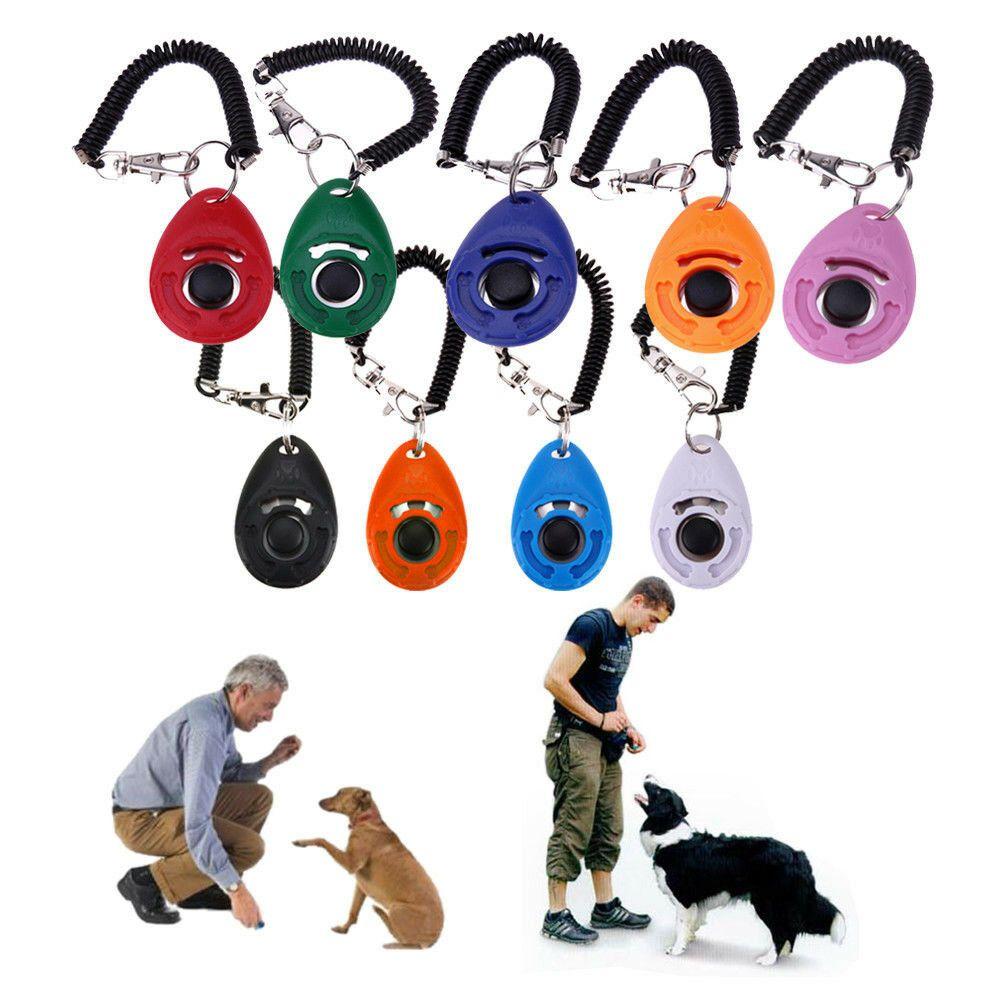Pet Dog Training Clicca accessori Clicker Agility Dog di addestramento sugli aiuti alla formazione Obbedienza con la corda telescopica e gancio KHA250