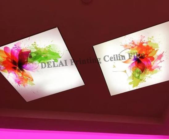 Fantasy-Farbdruck-Deckenfilm Fastinating Stretch Ceiling Film
