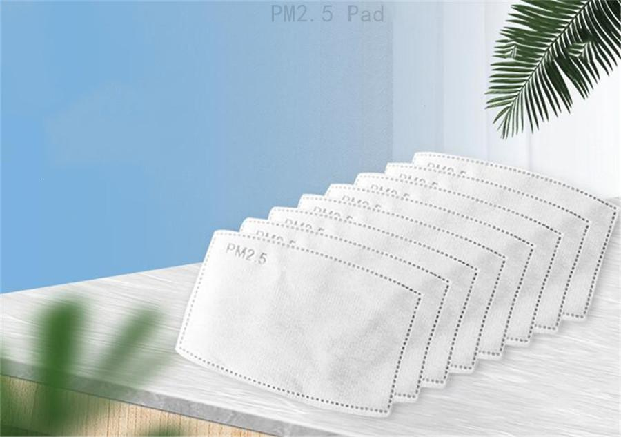 Pads 5 Layer dust mask pm2.5 activate carbon filter adult Pm 2.5 Masque Dustproof Mask Core Replacement Mask Only Pad