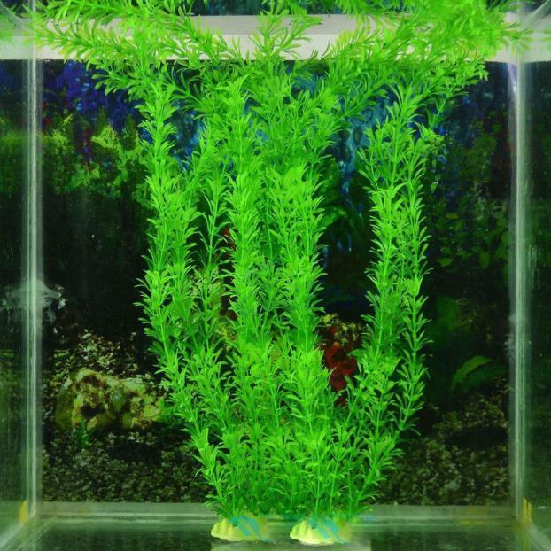 Grosshandel Pretty Green 13 Kunstrasen Dekoration Wasser Aquarium Aquarium Zubehor Dekor Ornament Pflanze Kunststoff Keramik 32cm Von Baiboss 1 68 Auf De Dhgate Com Dhgate