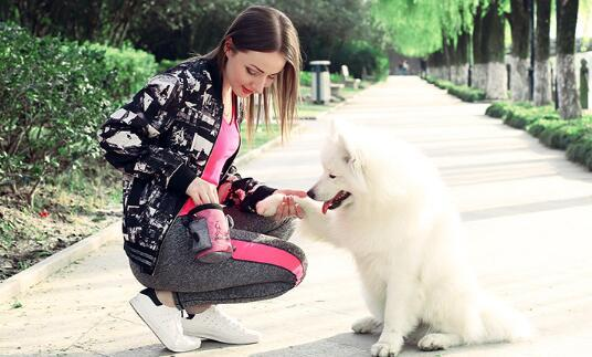 Pet Snack Bag For Cats Dogs Puppy Waterproof Oxford Cloth Training Bags Obedience Hands Free Agility Bait Food Treat Pouch Train Pouch