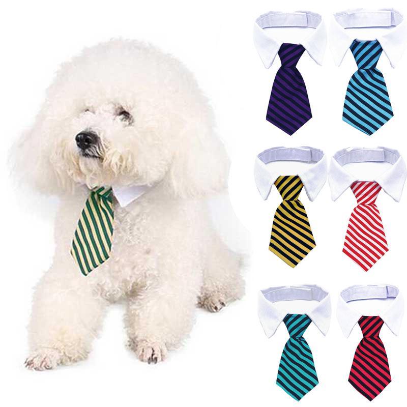 قابل للتعديل كلب شريط القوس التعادل القط صغير الحيوان مخطط ربطة العنق لطيف طوق ربطة طوق الحيوانات العنق الأبيض طوق الكلب ربطة العنق BH2797 TQQ