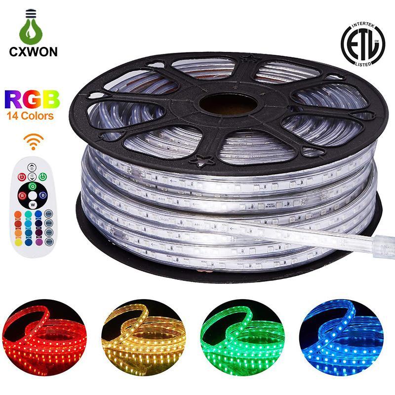 220V 110V LED Strip Light 150ft SMD2835 SMD5050 120leds/m LED Rope Light IP65 Warm White RGB Neon Decoration Indoor Outdoor LED Strip