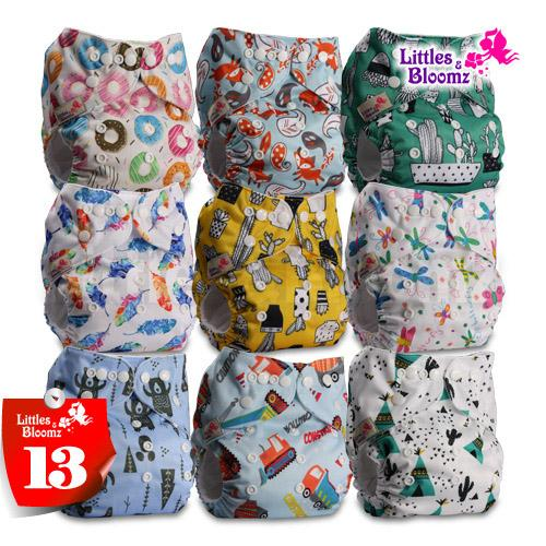 Fastener: Hook-Loop Littles /& Bloomz Set of 1 with 1 Bamboo Charcoal Insert Pattern 44 Reusable Pocket Cloth Nappy
