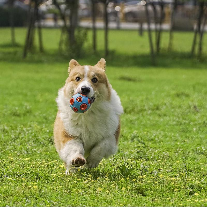 Resist neu Biss Haustier-Kugel-Spielzeug Haustier Hund Katze quietschendes Spielzeug Kauartikel Audio Play Ausbildung Spielzeug