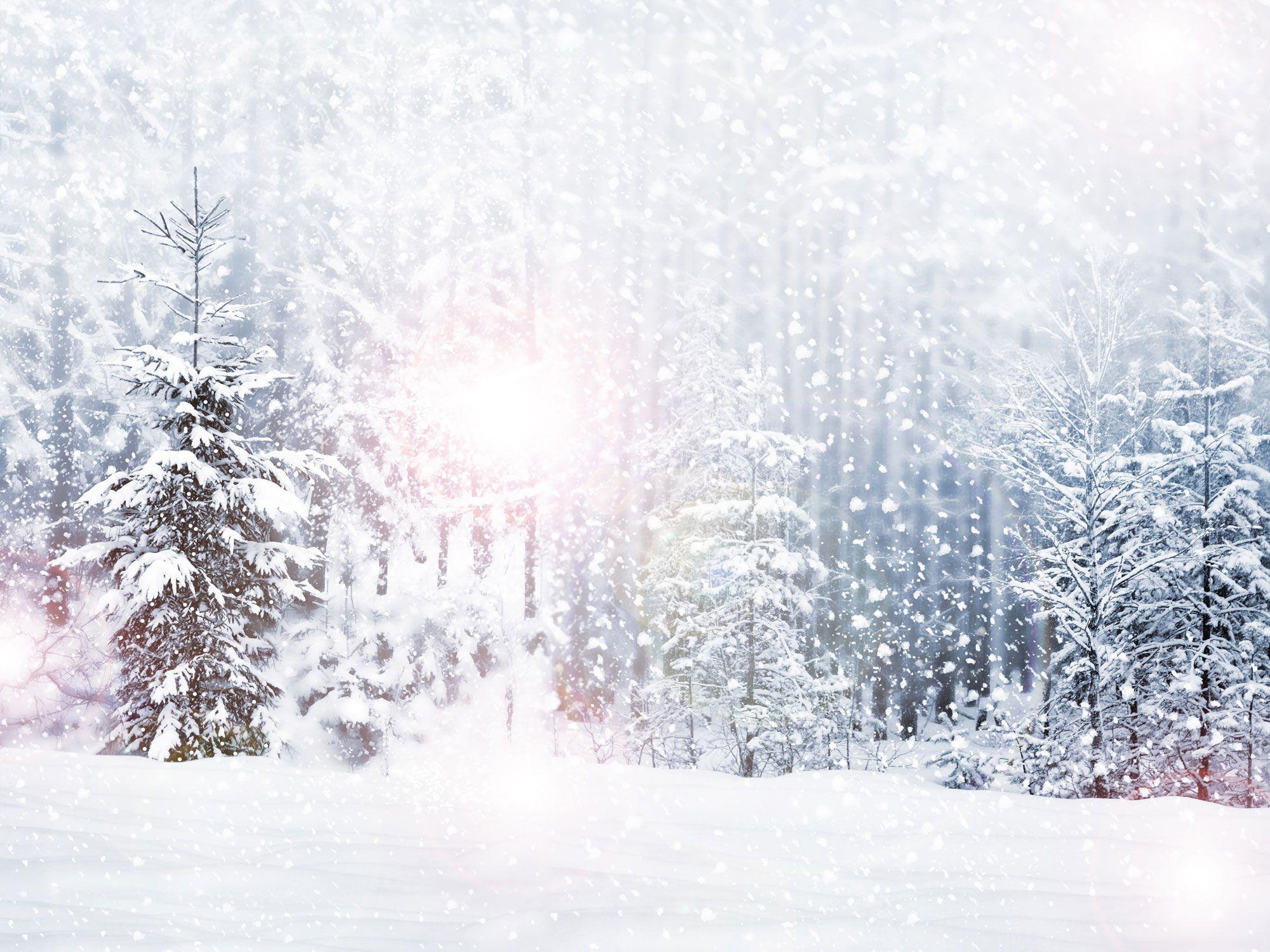 Winte Снегопад лес Деревья Виниловый Фотография фоны Frost лес фото Booth обои для рождественской вечеринки студии реквизита