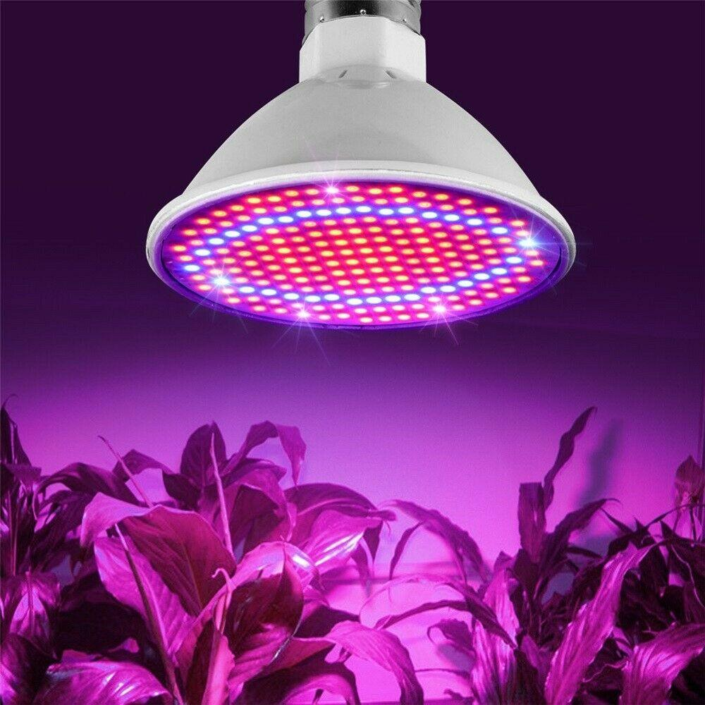 2019 New 200LED E27 Plant Grow Light lamp flower seeds Growing Lights Bulbs Hydroponics vegetable seedlings fill light potted succulent lamp