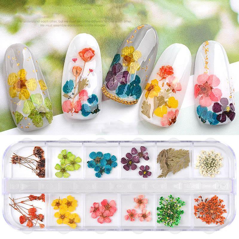 12Grid / Box Mix Getrocknete Blumen Nail Dekorationen Schmuck natürliche Blumen-Blatt-Aufkleber 3D Nail Art Designs Polish Maniküre Zubehör