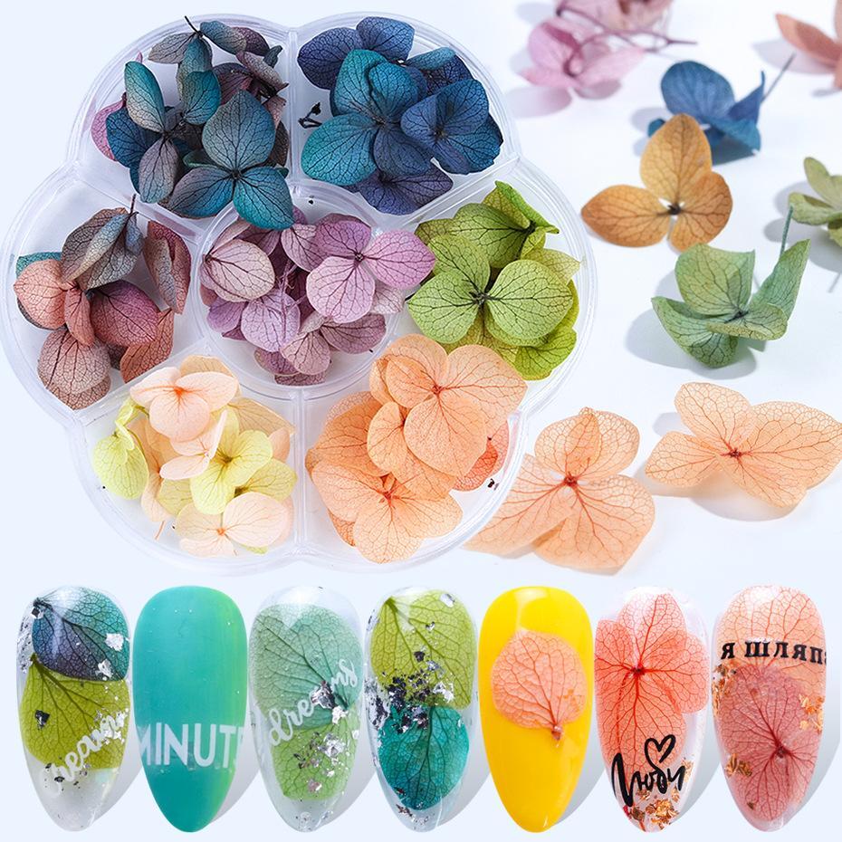 Tatyking Tırnak Kuru Çiçekler Ins Japon Moda Akış Tırnak Kutusu Manikür Tırnak Süsler ölümsüzleşmiş MJ0195