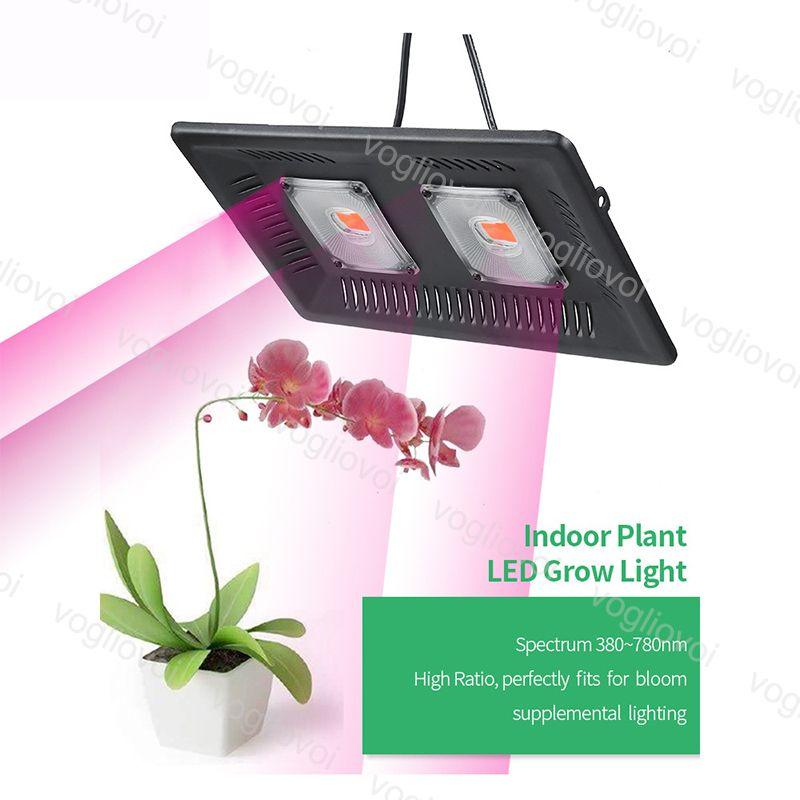 Full Spectrum Grow Light 100w 3000k, Outdoor Grow Lights