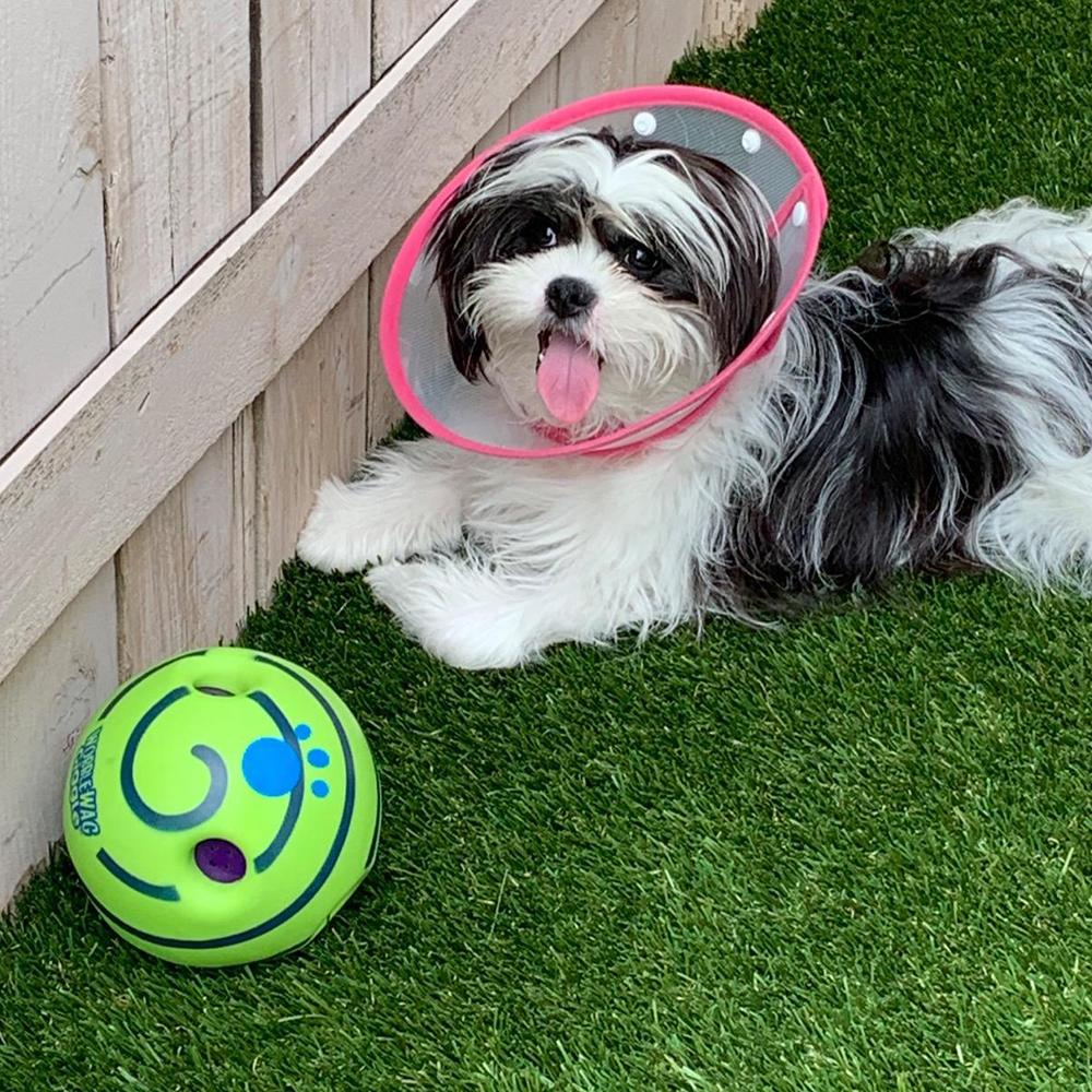 Dog Toy Fun Giggle Sounds Ball Pet Cat Dog Toys Silicone Jumping Interactive Toy Training Ball For Small Large Dogs Pet Products Y200330