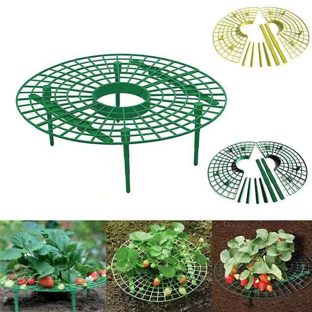 الدعم مصنع الفراولة زراعة حامل تسلق دعم النبات فاكهة العنب الدعائم زهرة عمود أدوات الزراعة الحدائق القوس