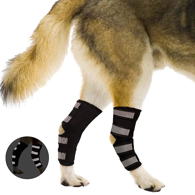 2Pcs/lot Pet Knee Pads Dog Support Brace for Leg Hock Joint Wrap Breathable Injury Recover Legs Dog Protector Support