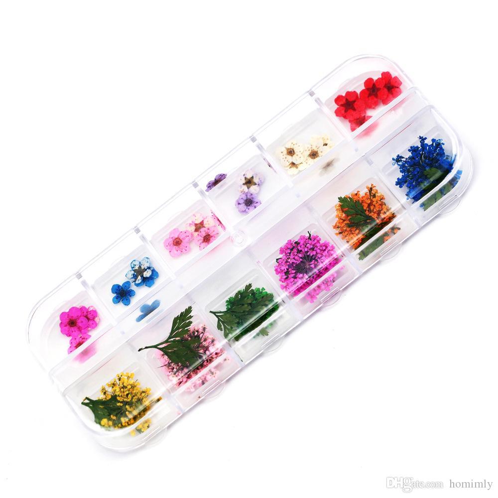 3D Dry Flower Nail Art Decoration 12 Colors Real Natural Plum Babysbreath Dried Leaf Floral Slices Gel Polish DIY Manicure Sticker Accessory
