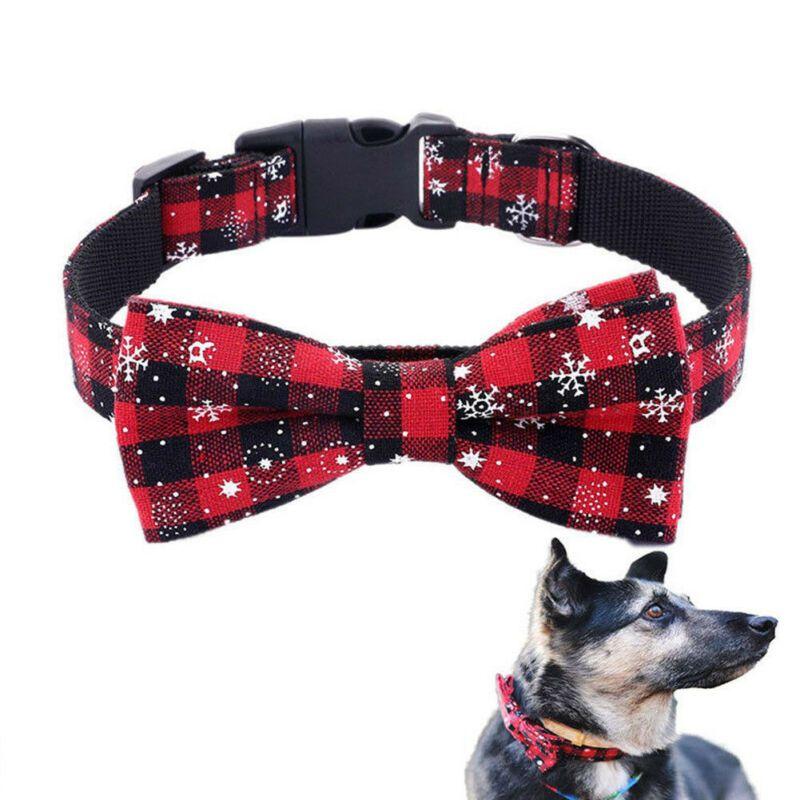 collier pour chien avec noeud papillon