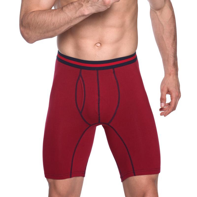 Lungo Boxer Shorts di cotone Plus Size 6pcs / uomini in più del lotto di modo sexy della qualità Mutandine intimo maschile Underpant Cueca Boxer Grande Y200415