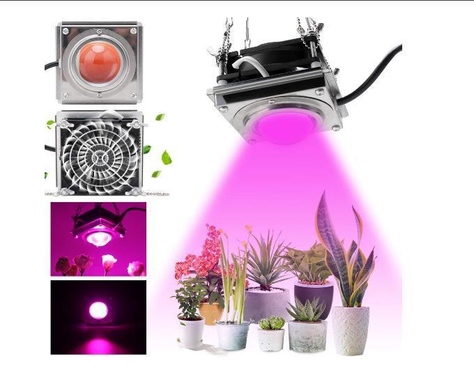 LED تنمو ضوء للنباتات الداخلية، 3000K 60W أشعة الشمس المصانع كاملة المصانع مع تبريد تبديد الحرارة أقوى دون ضجيج