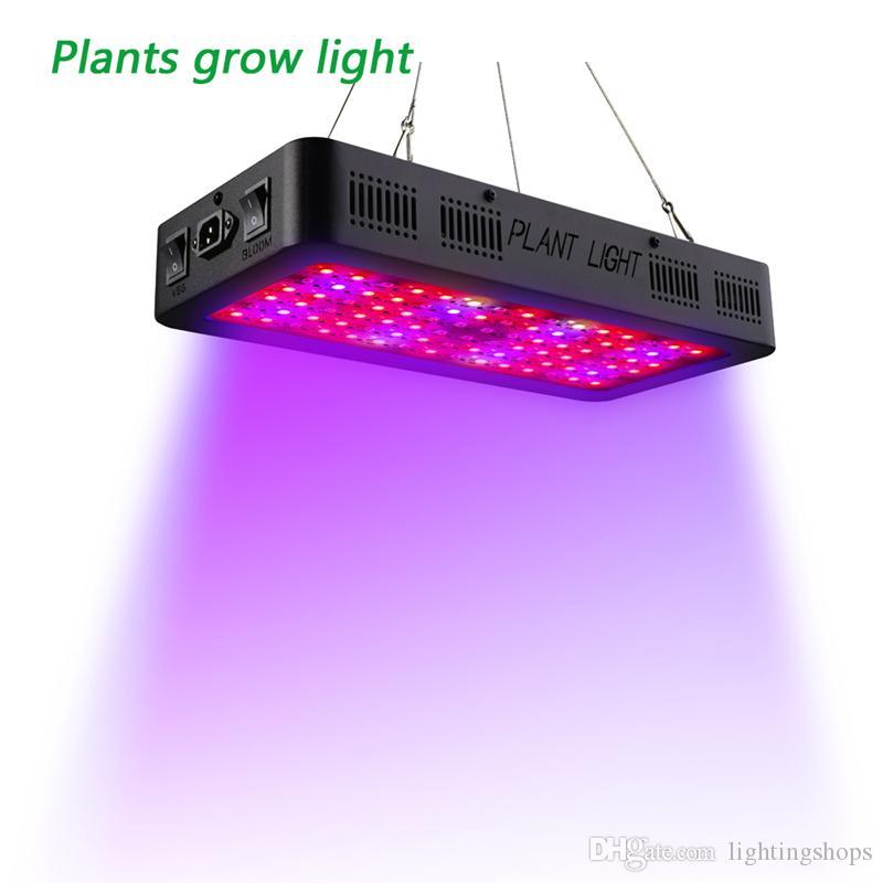 900W LED crece la luz de espectro completo para plantas Flores Semilla Veg cubierta del invernadero Lámparas crecimiento crezca llevó las luces