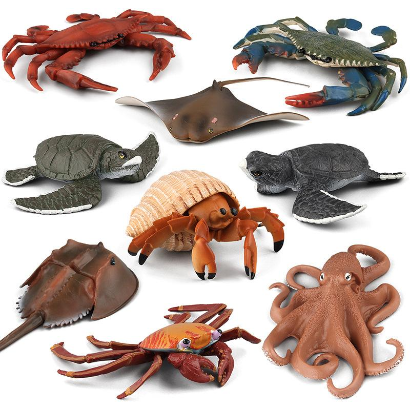9 pçs / lote organismos marinhos modelo brinquedos ciência e educação simulação marinha animais modelos