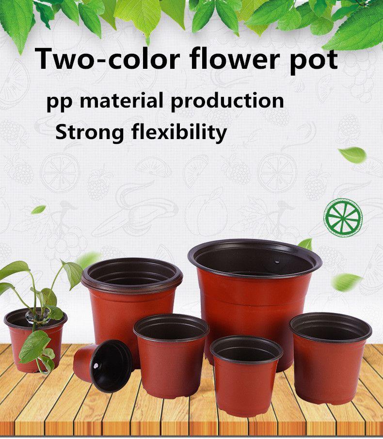 Spot all'ingrosso PP due colori Flower Pot Florovivaismo due colori Nursery Pianta in vaso Coltivazione succulente Flower Pot