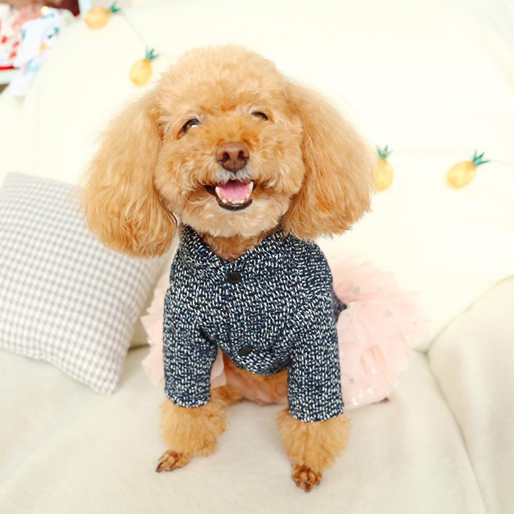 Il nuovo modo Pet Cherry Gonna Autunno Inverno Confortevole gatto Vestiti del cane