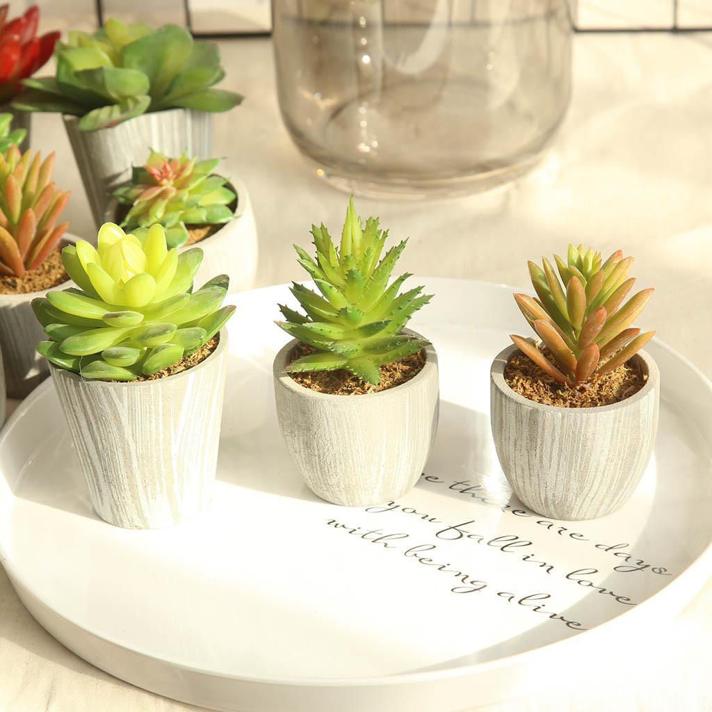 Plantes Succulentes Simulations bricolage artificiel Bonsai charnue Fleur Art Home Decor