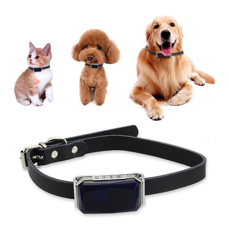 G12 GPS para el seguimiento en tiempo real mascotas perro LBS + GPS + AGPS + Wifi ubicación IP67 a prueba de agua de dos vías llama Geo-cerca
