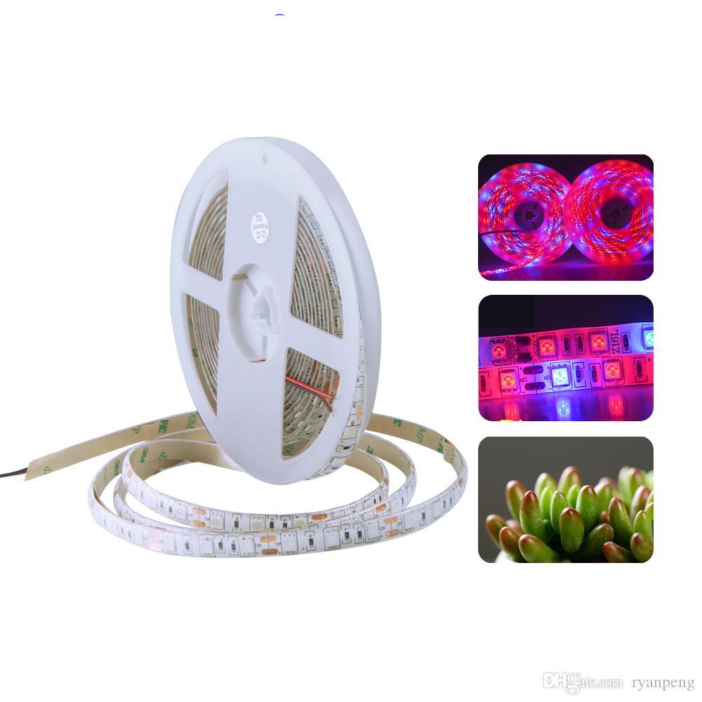 LED Phyto lampada Grow strip light 5m 12v 5050smd rosso blu impermeabile spettro completo 300leds nastro stringa stringa LED pianta luce fitolampy