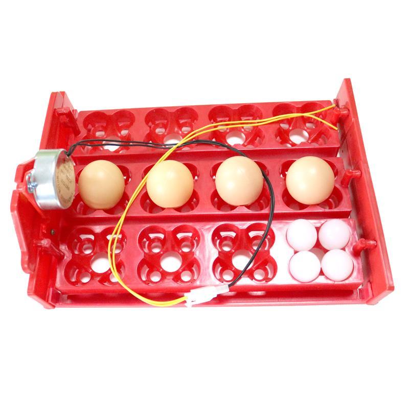12 Eier / 48 Vögel Eier Incubator Drehen Eier Fach 220V / 110V / 12V Hühnervogel Automatische Inkubator Geflügel Inkubator Ausrüstung
