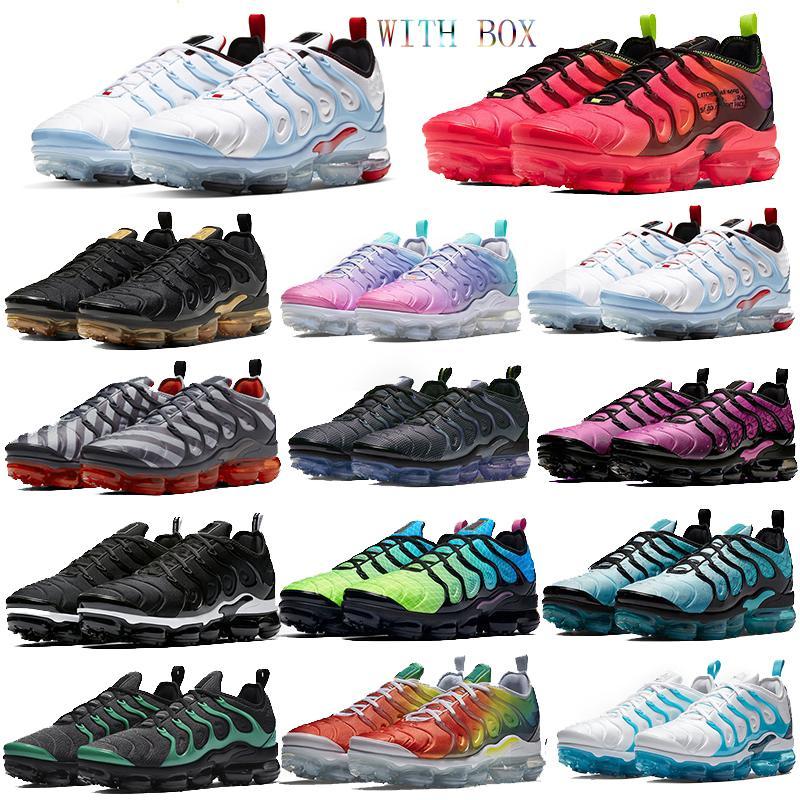 أعلى USA تينيسي زائد أحذية الفارسي البنفسج منتصف الليل البحرية وسادة مصمم الاحذية كول احذية الأولمبية رمادي فريق هندسي الرياضة مع صندوق