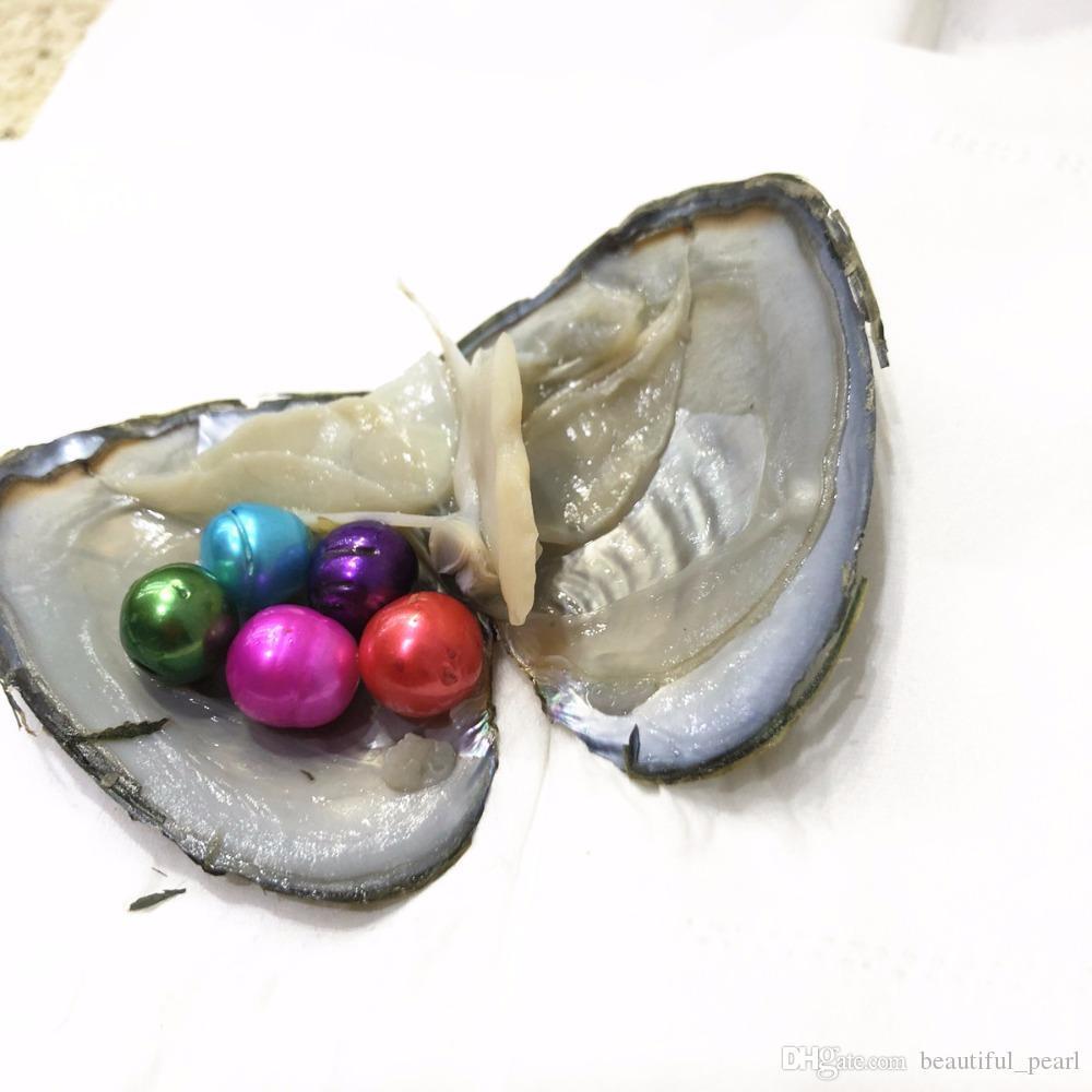 2020Cheap fai da te Edison Pearl Oyster naturale allentato rotondo perla 10-12 mm vuoto fai da te Decorazione Confezione regalo Rosa Bianco all'ingrosso Purpel nero