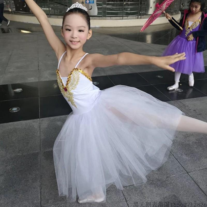 New Classical Professional White Swan Lake Ballet Costume Romantic Ballet Tutu Dresses Performance Girls Long Tutu Outfit