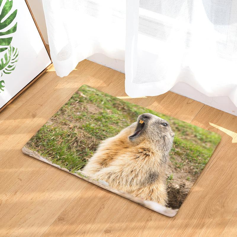 New Squirrel Printing Land Mat Animal Print Door Mat Shower Room Kitchen Toilet Strip Water Uptake Non-slip Carpet Floor Rug