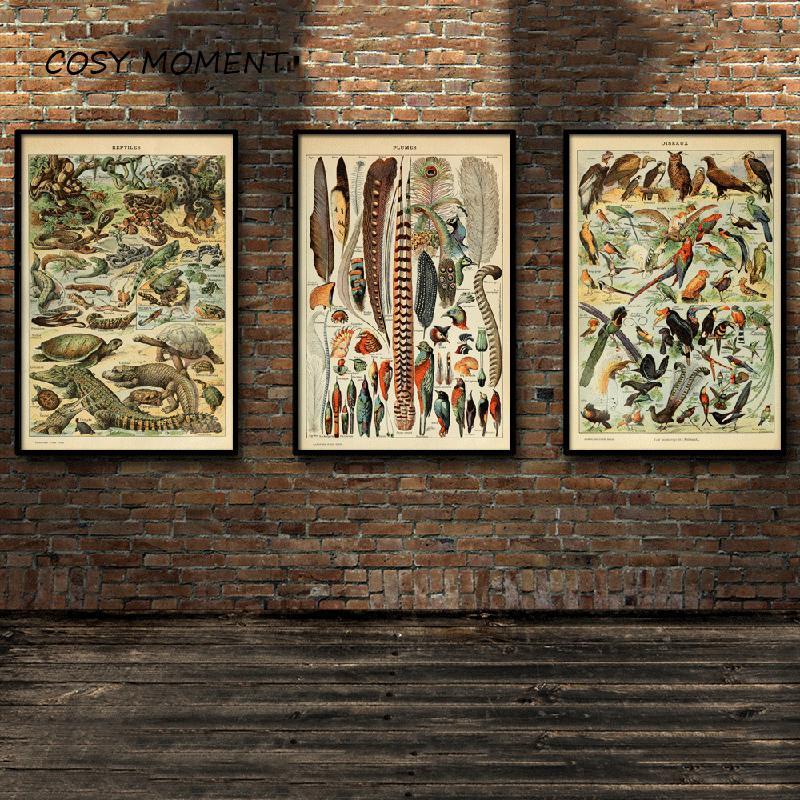 COZY الطيور MOMENT الديناصور النباتية تحديد التعليمية المرجعي مخطط جدار الفن ملصقات ومطبوعات تابلوه جدارية