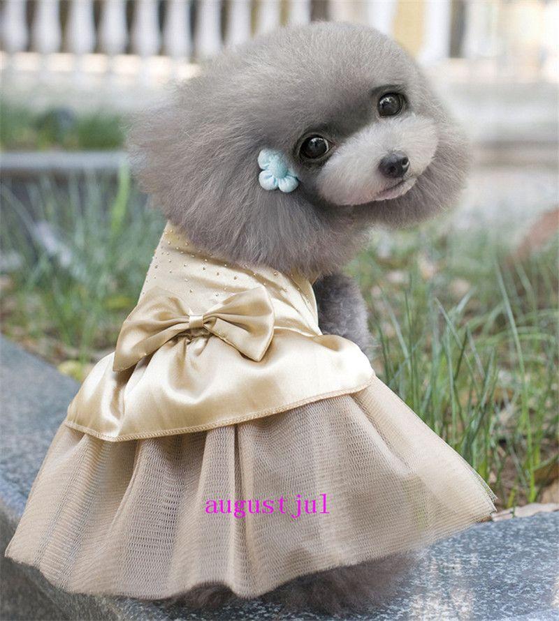 Nouveau chien Jupe Teddy Caniche Chihuahua Robe de mariée en dentelle jupe bulle chat femelle chien et Printemps Eté Princesse Jupe