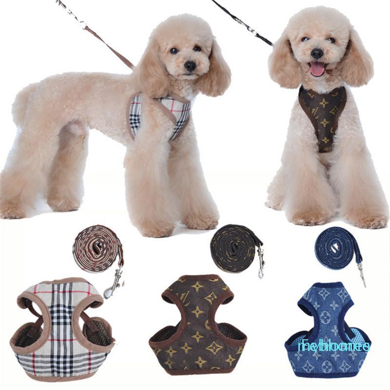 Designer PET Geschirre Leinen Mode Brief Stickerei Niedlichen Teddy Welpen Kleine Hund Liefert Persönlichkeit Haustier Leine Kragen