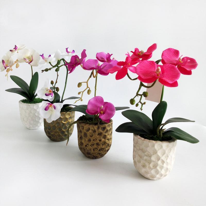 AUGKUN الديكور المنزلي البسيطة الاصطناعي زهرة الحلي محاكاة الفراشة الأوركيد الخضراء النباتات والزهور وهمية النباتات بوعاء صغير
