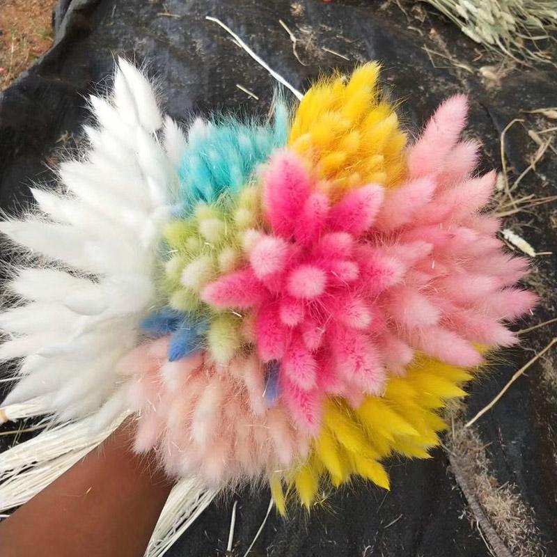 60pcs / lot Hochzeitsdeko natürliche getrocknete Blumen Bunte Blumen-Blumenstrauß für Schwanz Gras Bunch Startseite Künstliche Dekorations