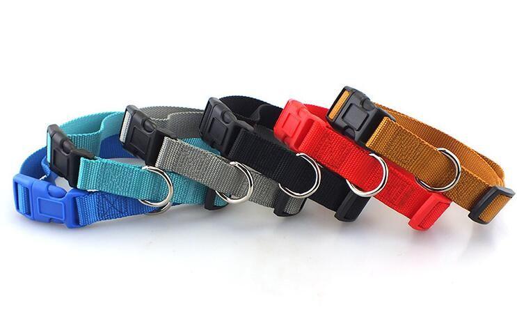 Nylon Webbing Dog Collar Heavy Duty Clip Buckle Pet Collar for Small Medium Dogs Chihuahua Dog GA646